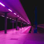 purpleway.jpg